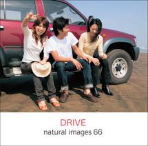natural images 066 DRIVE