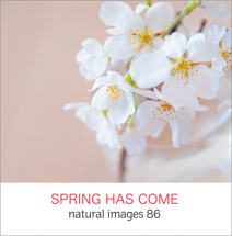 natural images 086 SPRING HAS COME