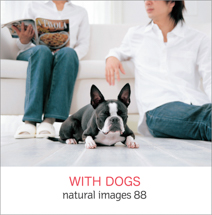 natural images 088 WITH DOGS